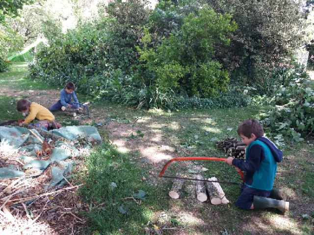 Sawing-trees